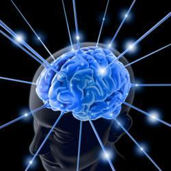 cervello blu